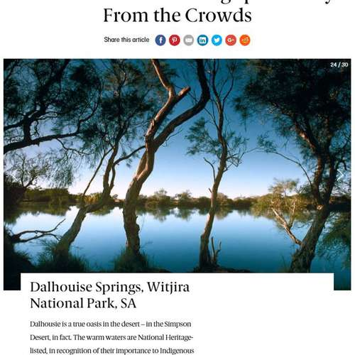 Dalhousie Springs Top swim destination