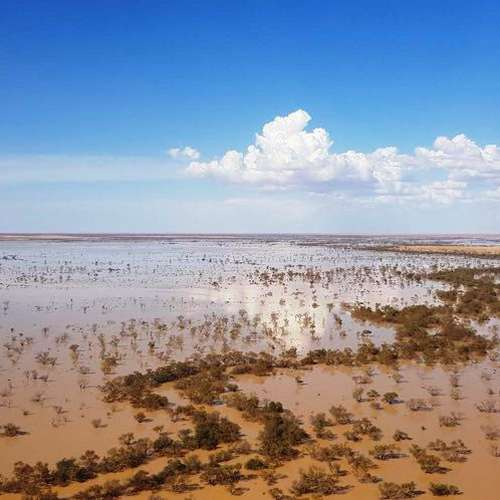 Flood waters reach outback SA!