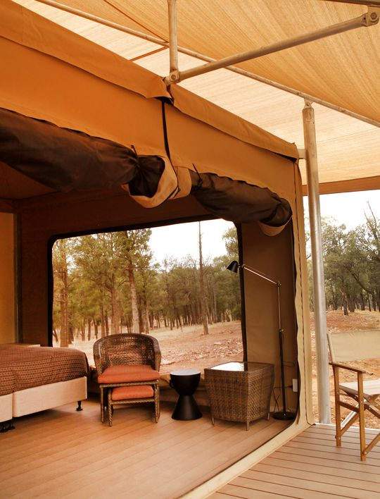 FAMILY SAFARI TENT & Ikara Safari Camp u0026 Glamping - Wilpena Pound Resort