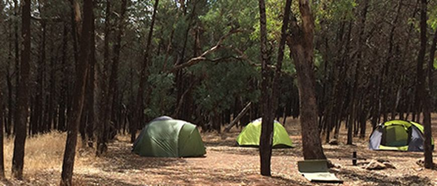 Campground15Dec2015 562 189