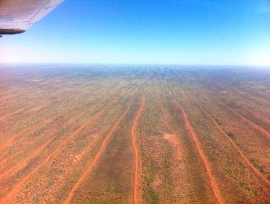 Simpson Desert 2011