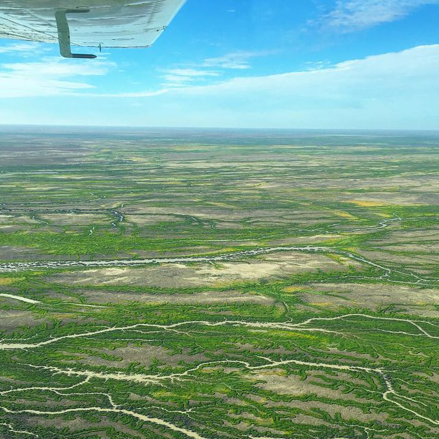 Lake_Eyre_Green_Instagram