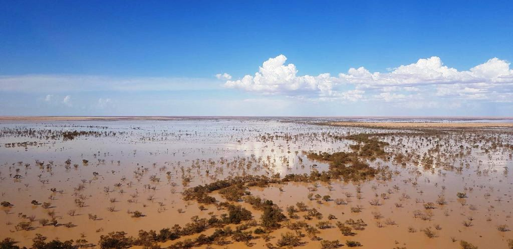 Flood waters reach outback SA!